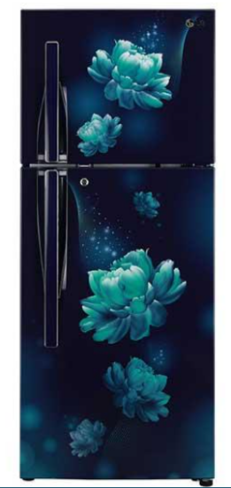 Picture of LG(GLB292RVBN.ABCQ) Double Door Refrigerator -260 Ltr